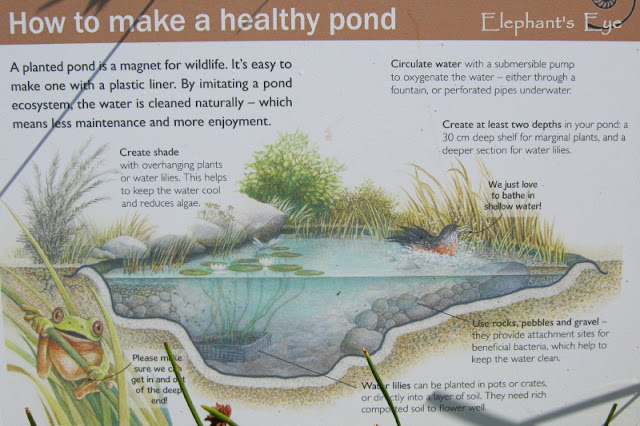 How to pond