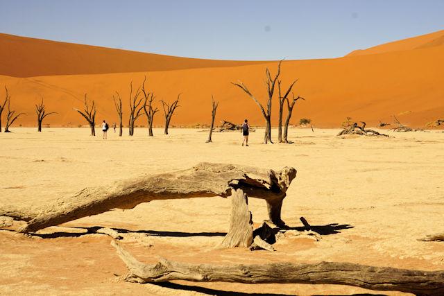 Dead Vlei in der Namib Wüste (C) Kundenfoto