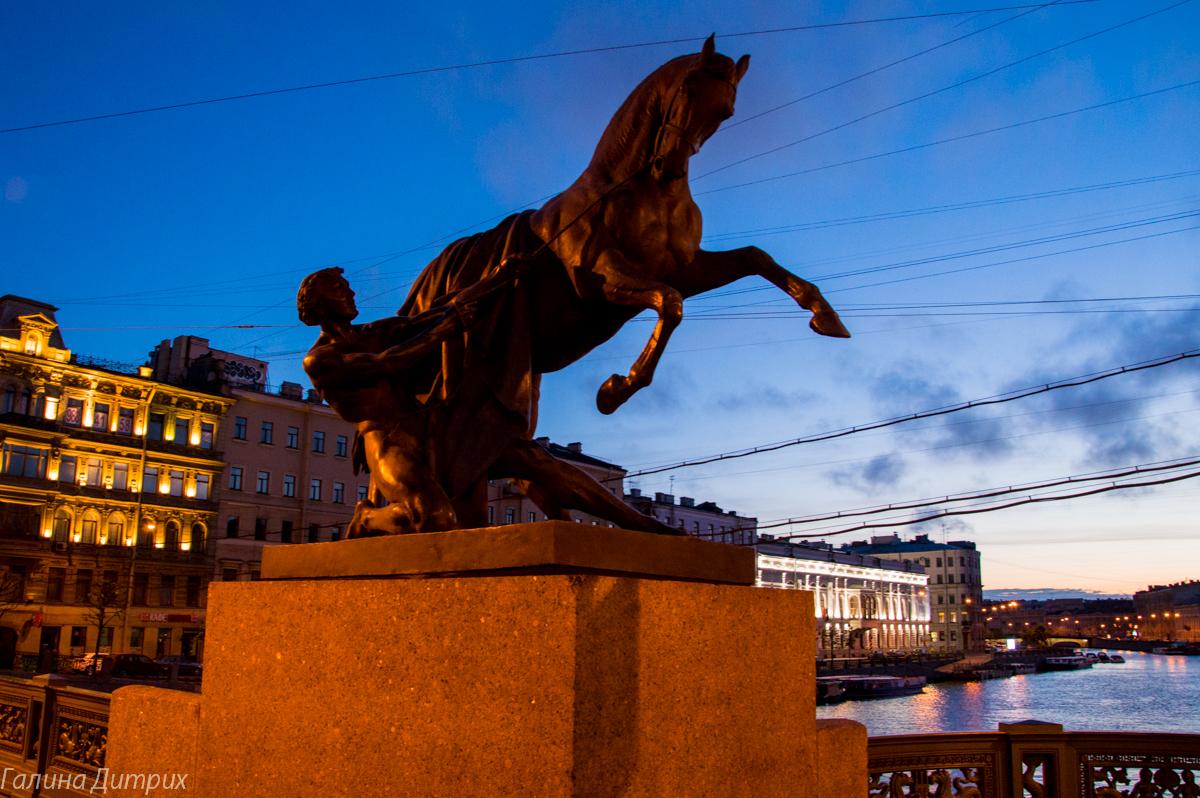 Ночной Невский фото