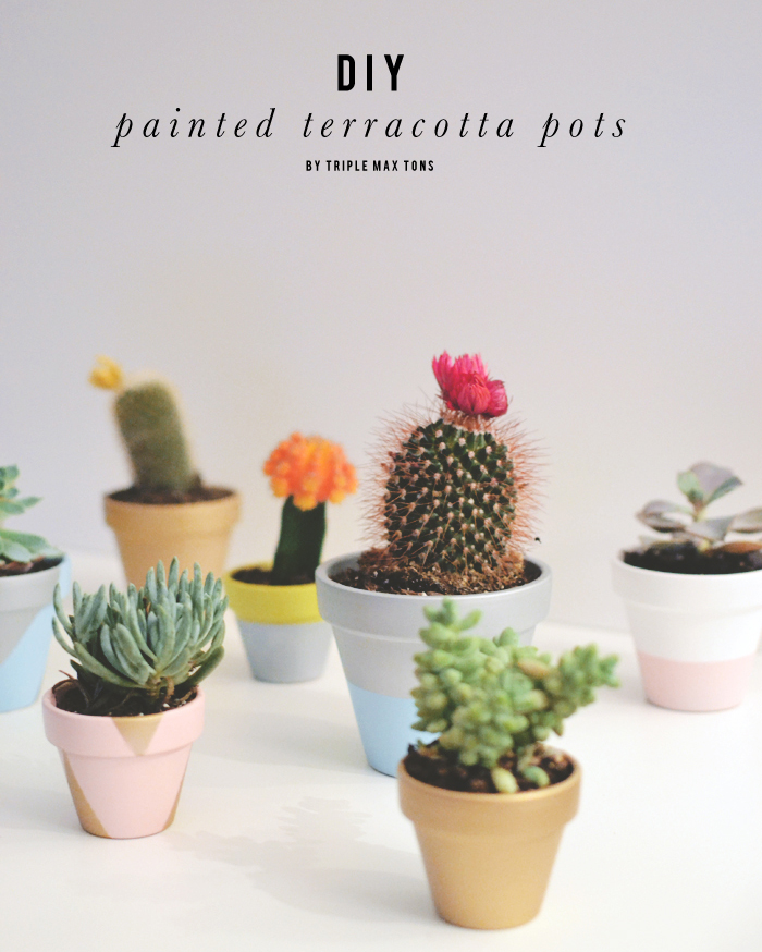 Diy Painted Terracotta Pots With Succulents And Cacti Triple Max Tons