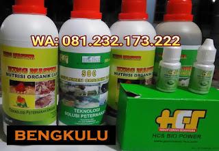 Jual SOC HCS, KINGMASTER, BIOPOWER Siap Kirim Bengkulu