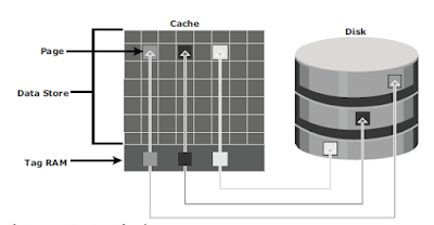 Structure_of_cache