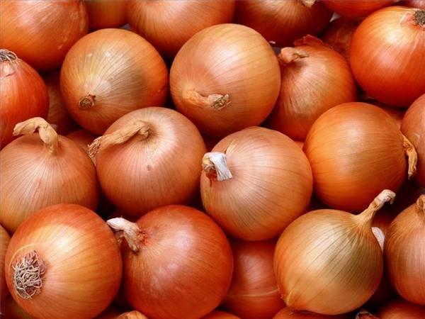 إرتفاع ملحوظ في أسعار البصل مع قدوم عيد الاضحي
