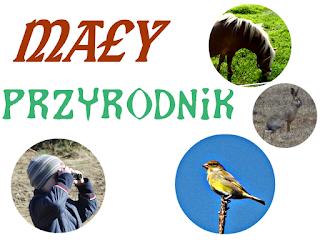 http://mamadoszescianu.blogspot.com/2016/03/may-przyrodnik.html