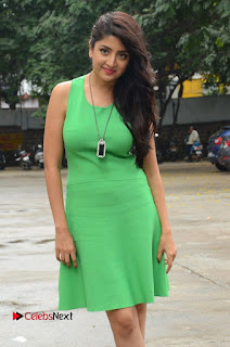 Actress Poonam Kaur Pictures in Green Short Dress at Prayanam Movie Opening  0011