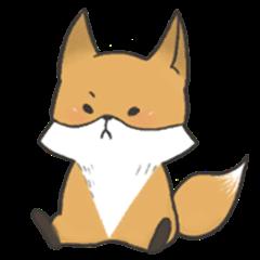 Carman fox