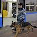 Detienen en Moscú a varios terroristas del Estado Islámico que preparaban atentados