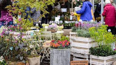 Plantas, jardines e inspiración en RHS Flower Show Cardiff 2019