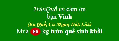 Trùn quế xã Ea Quế, Cư Mgar