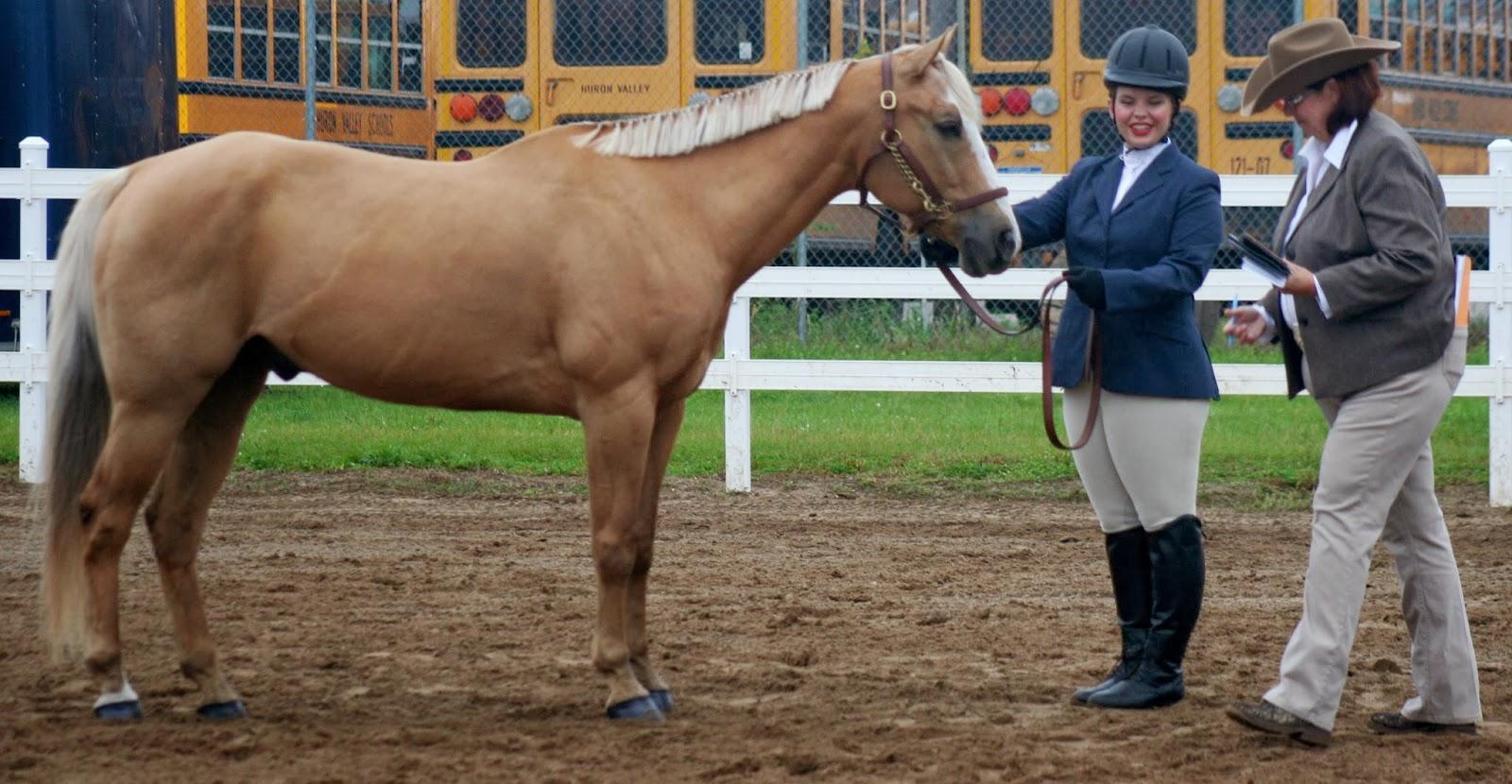 Milford high school equestrian team