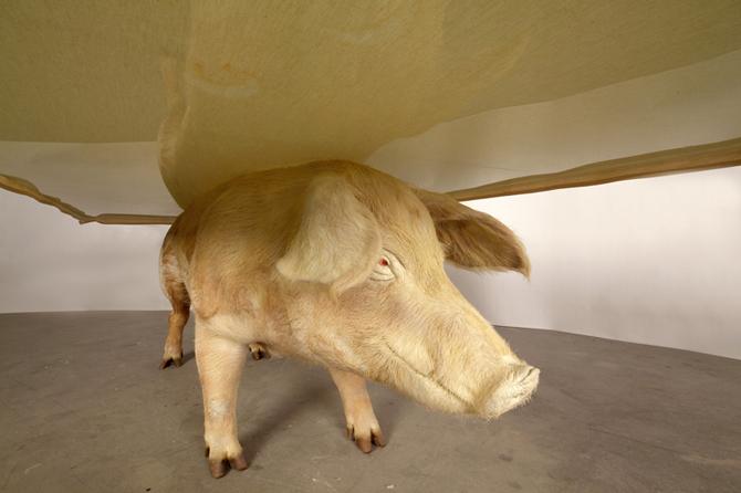 Stuffed Livestock Furnishings