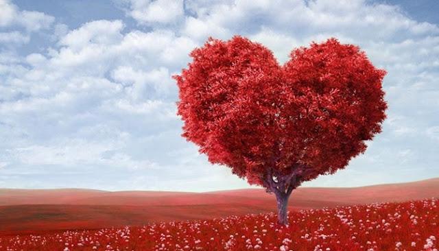Enam Tips Romantis Tuk Kamu Persembahkan Pada Orang Terkasih Saat Valentine