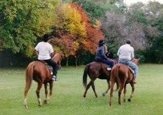Actividadse de Turismo Rural en España verde alternativa