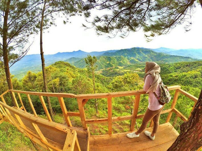 Rute Dan Lokasi Rumah Pohon Pabangbon Leuwiliang Wisata Hits