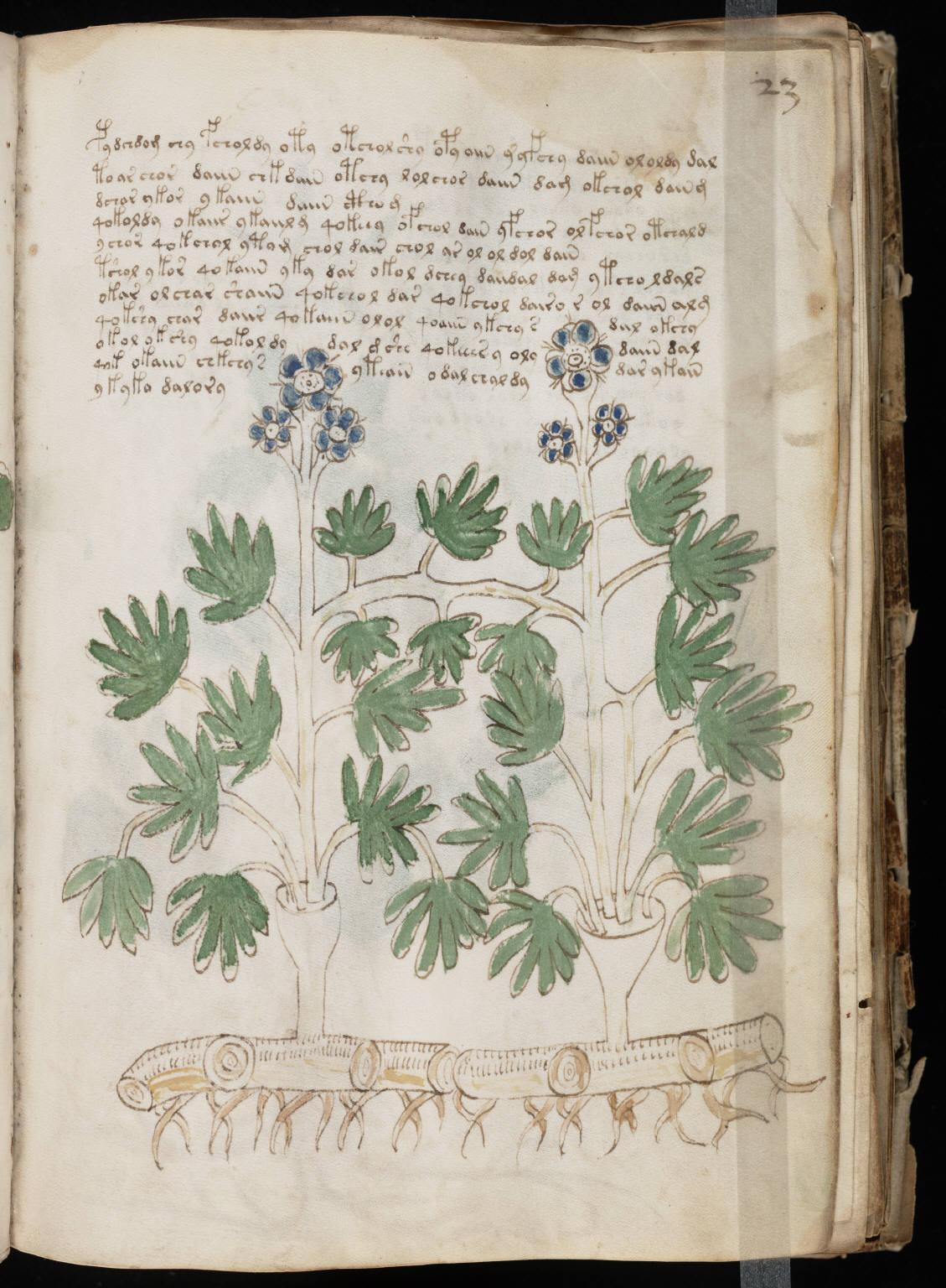 manuscrito045
