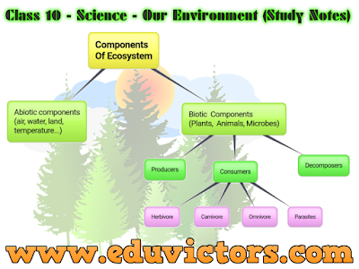 Class 10 - Science - Chapter 15: Our Environment (Study Points) (#cbsenotes)(#eduvictors)