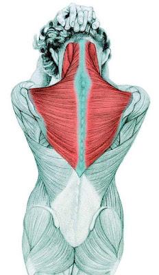 olahraga leher dapat meringankan ketegangan emosi