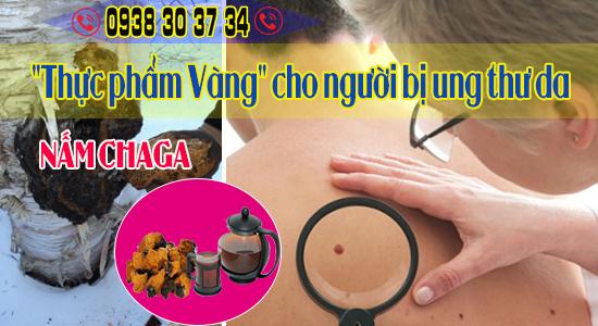 nam-chaga-thuc-pham-vang-cho-benh-nhan-ung-thu-da-aug14.png