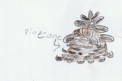 A drawing of a pinecone, from a nature notebook