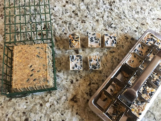 Photo of unmolded DIY vegan bird suet from the plastic tofu tray and stainless steel ice cube tray. https://trimazing.com/