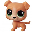 Littlest Pet Shop Series 1 Mini Pack Pitley Bullbury (#1-122) Pet