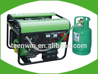 Teenwin biogas electric generator