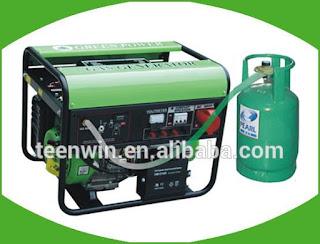 Teenwin biogas electric generator