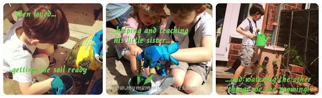 #kidsgrowwild gardening with children watering plants