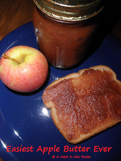Slow Cooker Apple Butter - A Nest in the Rocks