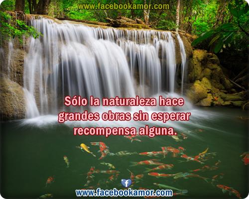 Frases De Amor Con Imagenes De Naturaleza: Imagenes Bonitas De Naturaleza Para Facebook