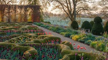 Jardines especialmente bellos cuando asoman los tulipanes