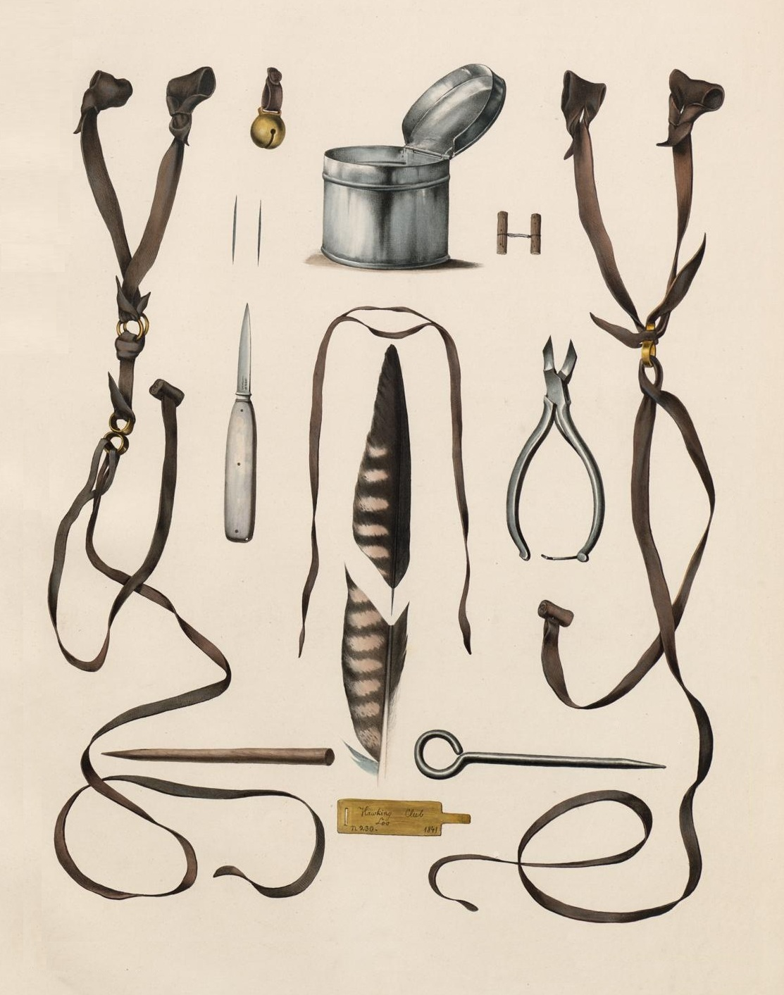 book illustration of training equipment used in falconry