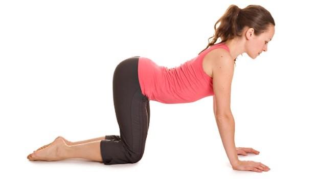 Cow Pose (Bitilasana) Yoga Steps and Benefits