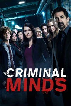 Criminal Minds 13ª Temporada Torrent – WEB-DL 720p Dual Áudio