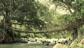 Sensasi Alam Ngalau ( Goa ) Indah Pangian Sumbar