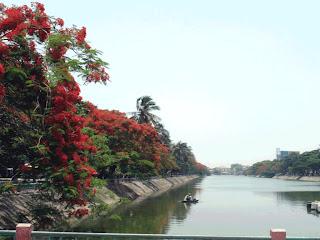 Riverside di Hai Phong, con fiori rossi Flamboyan