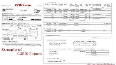 contoh ccris report