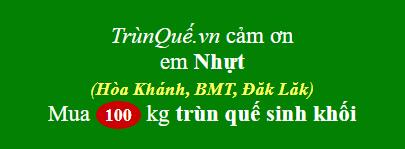 Trùn quế Hòa Khánh, BMT