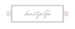Beautyelfe Blogvorstellung