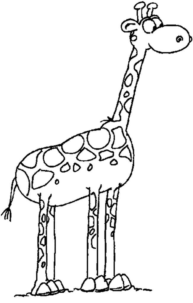 foto divertenti disegno giraffa da colorare On immagini di giraffe per bambini