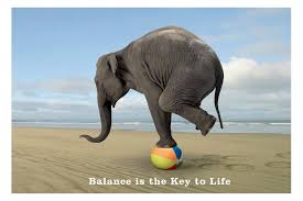 Balance and Motor Planning are vital skills