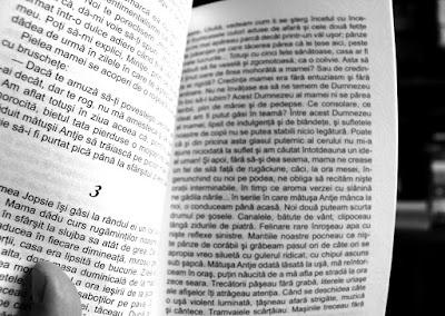 Torente, vol. 1, de Marie-Anne Desmarest. Recenzie