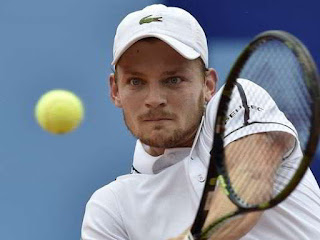 David Goffin tenis online
