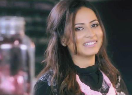 Heerey Lyrics - Love Punjab (2016) | Amrinder Gill