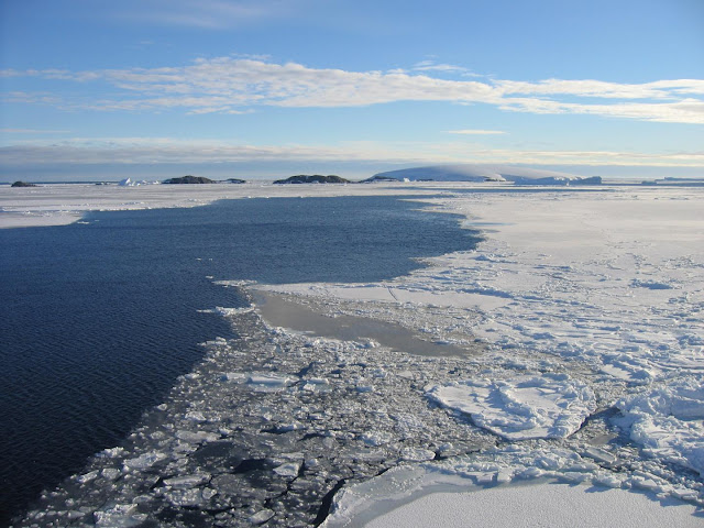 Ice-free corridor sustained Arctic marine life during last Ice Age