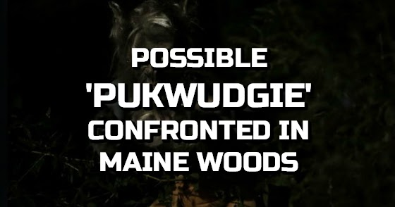 Possible 'Pukwudgie' Confronted in Maine Woods