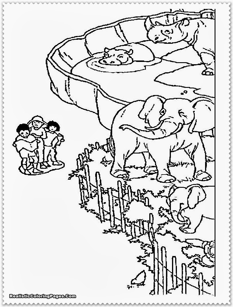 printable zoo animal coloring pages - photo#39