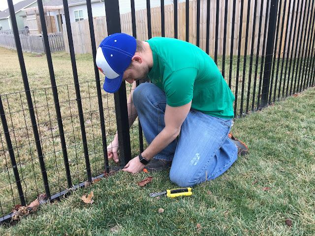 install rabbit fence with zip ties