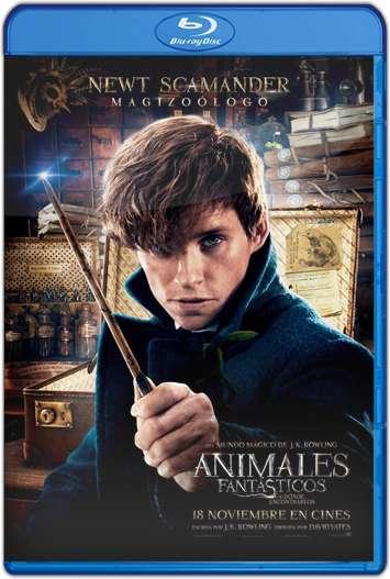 Animales Fantásticos y Donde Encontrarlos (2016) HD 1080p Latino