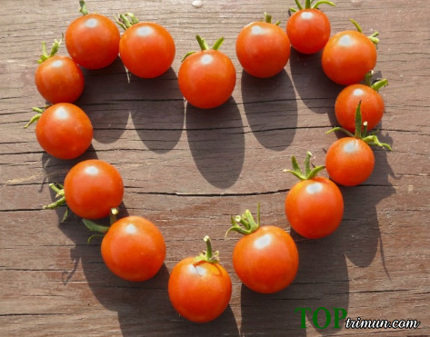 3 mặt nạ trị mụn từ cà chua siêu hiệu quả bạn đã thử chưa?